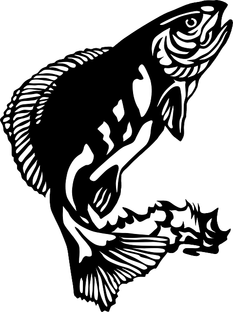 clip art free stock Drawing out jumping. Water fish arctic fishing