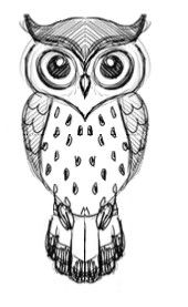 picture library Drawing owls. Owl design argh or.
