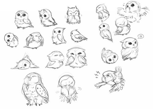 png royalty free Drawing owls cute baby. Studies by hinokit to