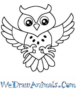 banner stock Drawing owl cartoon. How to draw a
