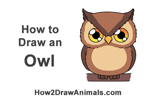 graphic royalty free library Drawing owl chibi. How to draw an