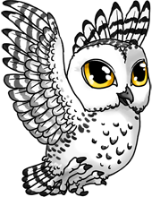 banner transparent download drawing owl chibi #112076982