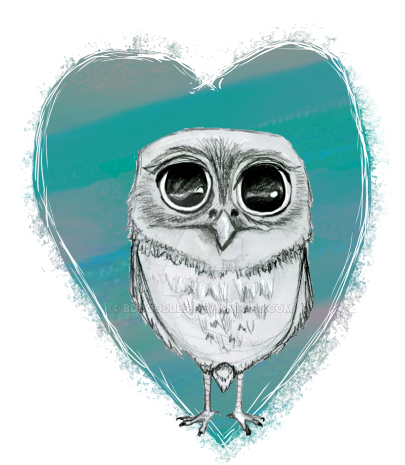 graphic transparent stock Drawing owl elf. Drawn pencil and in