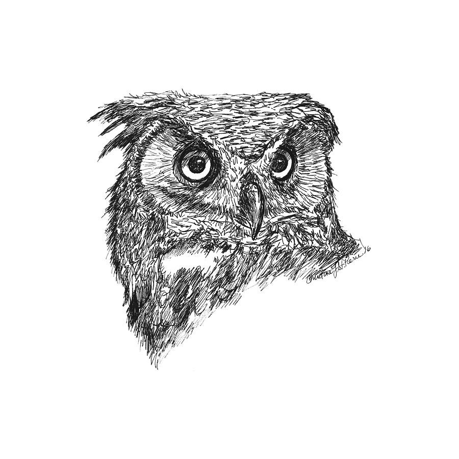 picture free Drawing owl great horned.