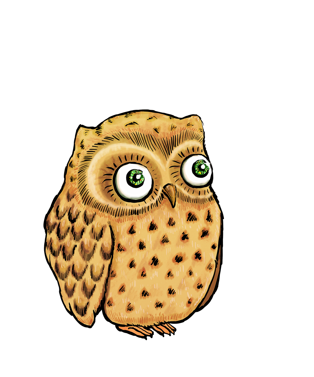 png Cute illustration bird free. Drawing owl owlet