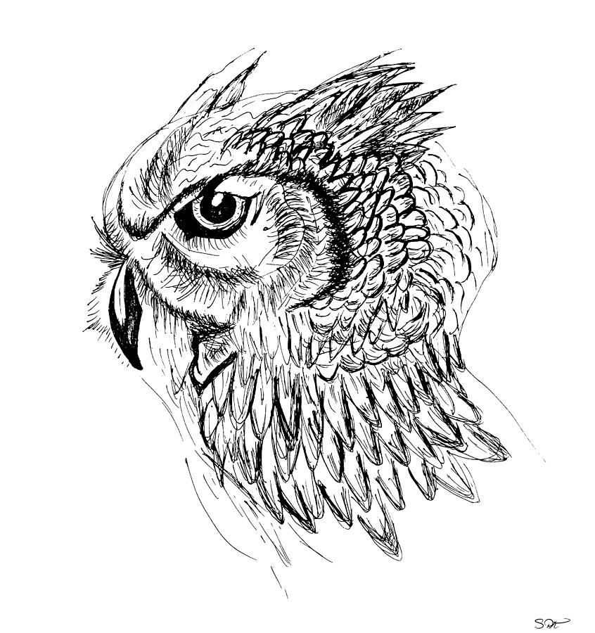 clipart stock Drawing owl sketch.