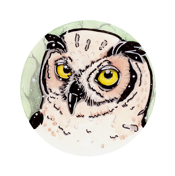 picture library library Drawing owl spotted. Eagle by monster e