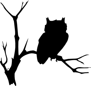 vector royalty free download Drawing owl tree. Black line drawings of