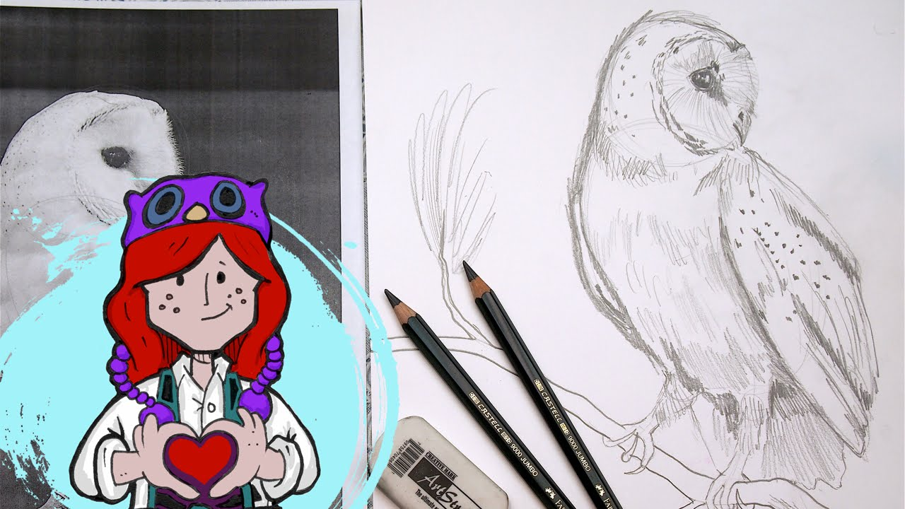 freeuse download How to draw barn. Drawing owls beginner