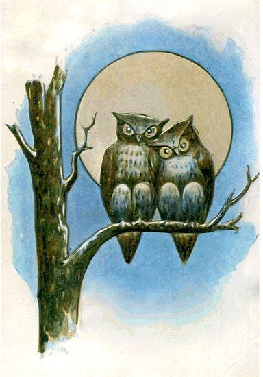 banner freeuse library Under a full moon. Drawing owls cuddling