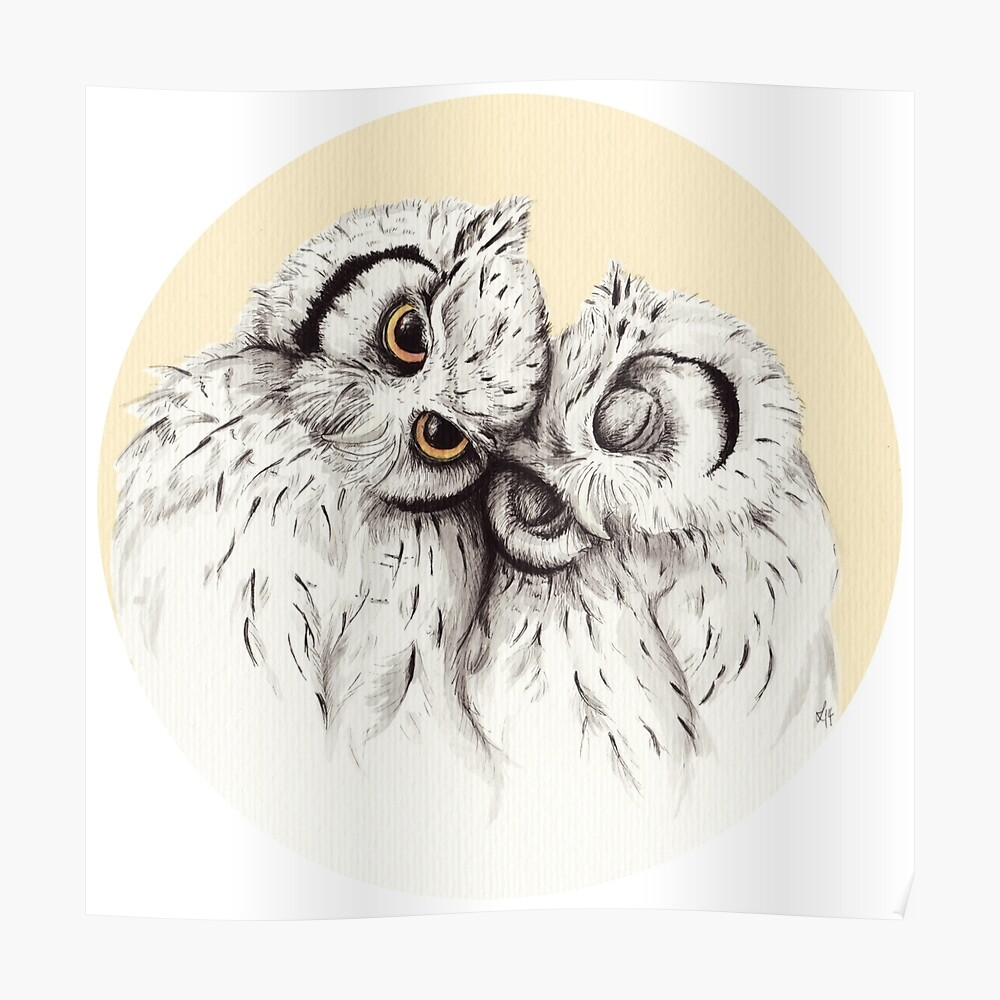 transparent stock Drawing owls cuddling. Little poster