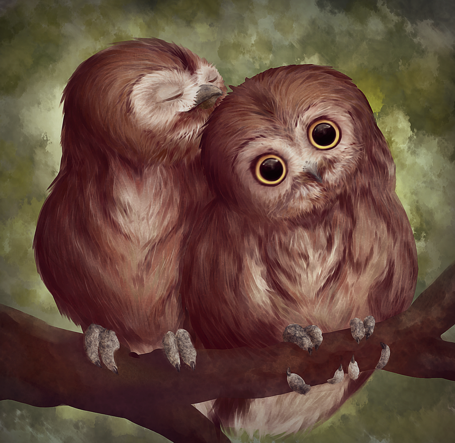 png freeuse stock Practice by kawaii fruit. Drawing owls cuddling