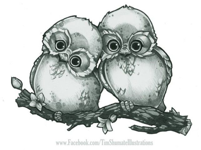clip art freeuse Owl on branch paintings. Drawing owls cuddling
