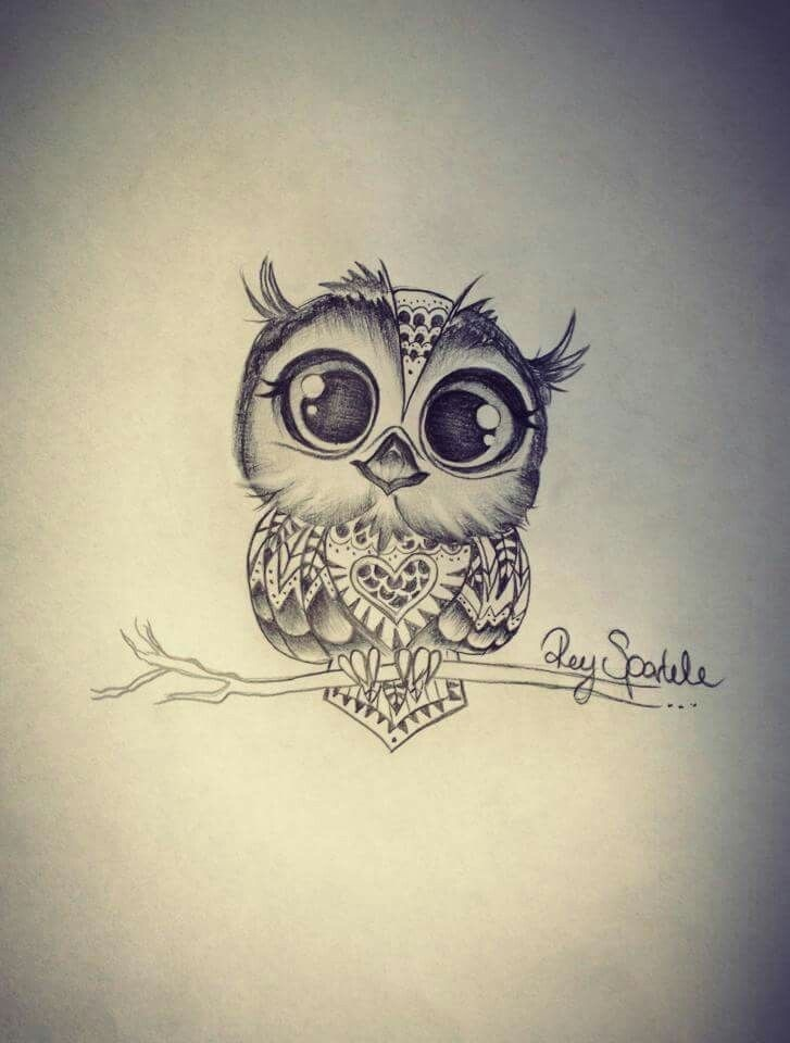 svg library library Owl shared by c. Drawing owls cute baby