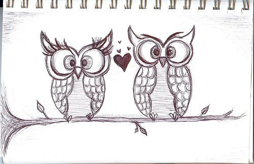 picture free stock Tumblr images owl canvas. Drawing owls love