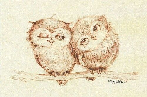 clipart library download Animals art beautiful cute. Drawing owls love