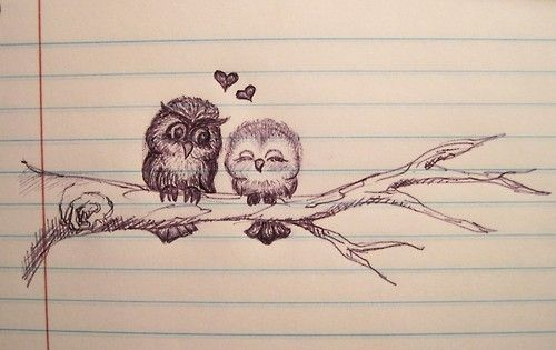 png download Drawing owls love. Owl and image drawings