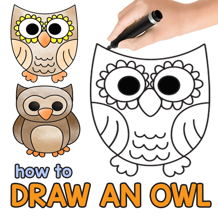 svg transparent download Drawing owls. How to draw an.