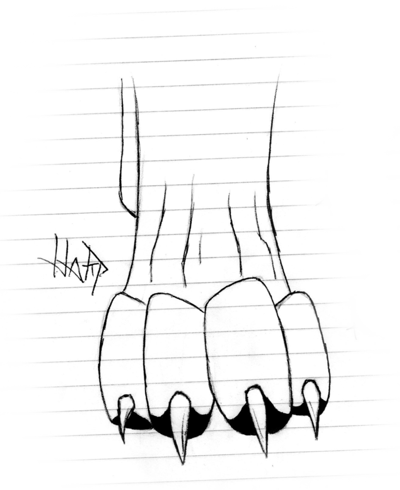 jpg library download Wolf Paws Photo Drawing