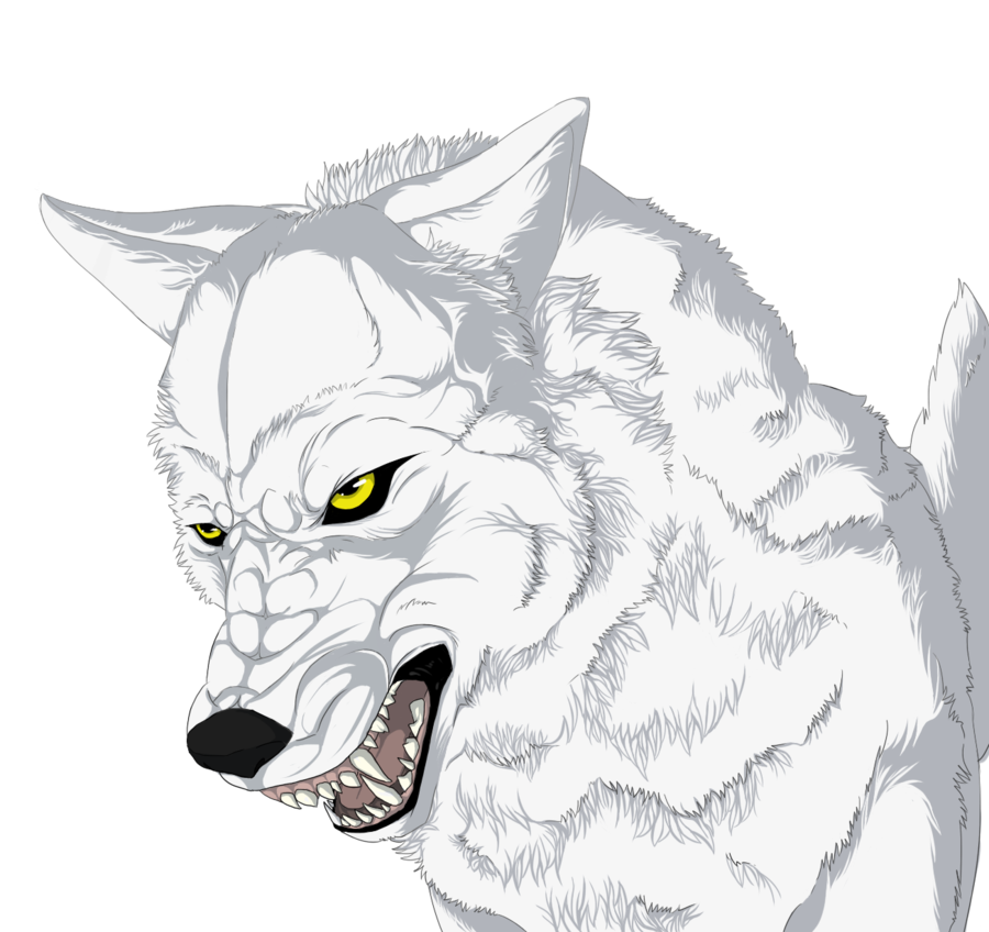picture transparent stock Drawing Pictures Of Wolves at GetDrawings