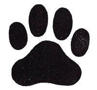 stock How to Draw Dog Paws