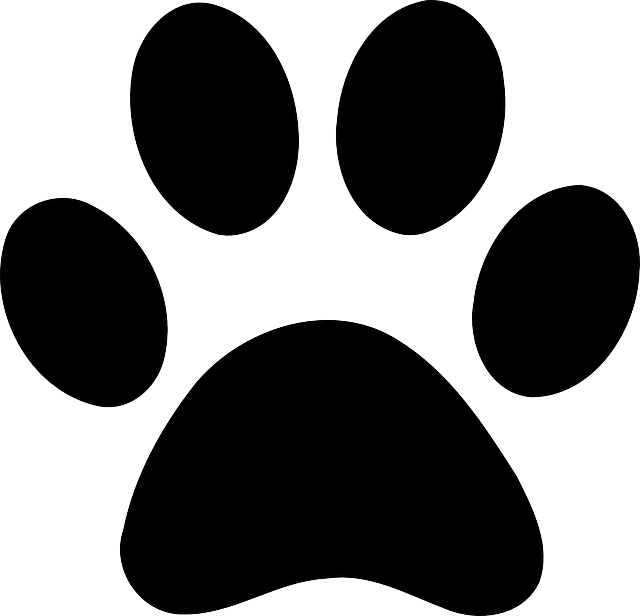 freeuse download Free Image on Pixabay