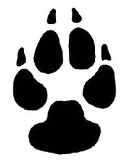 jpg freeuse stock drawing paws sketch dog #95367605