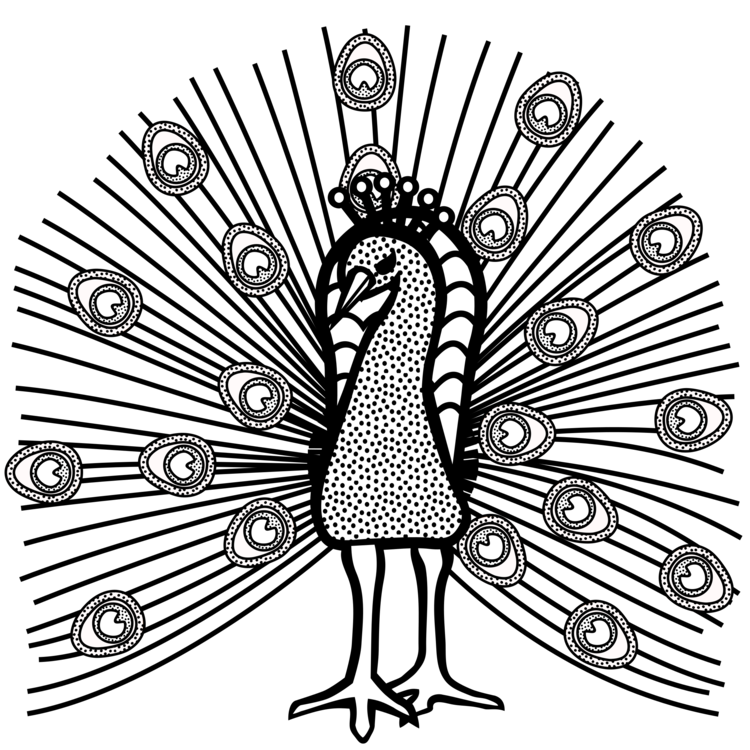 clip art library library Drawing peacocks black and white. Line art bird visual