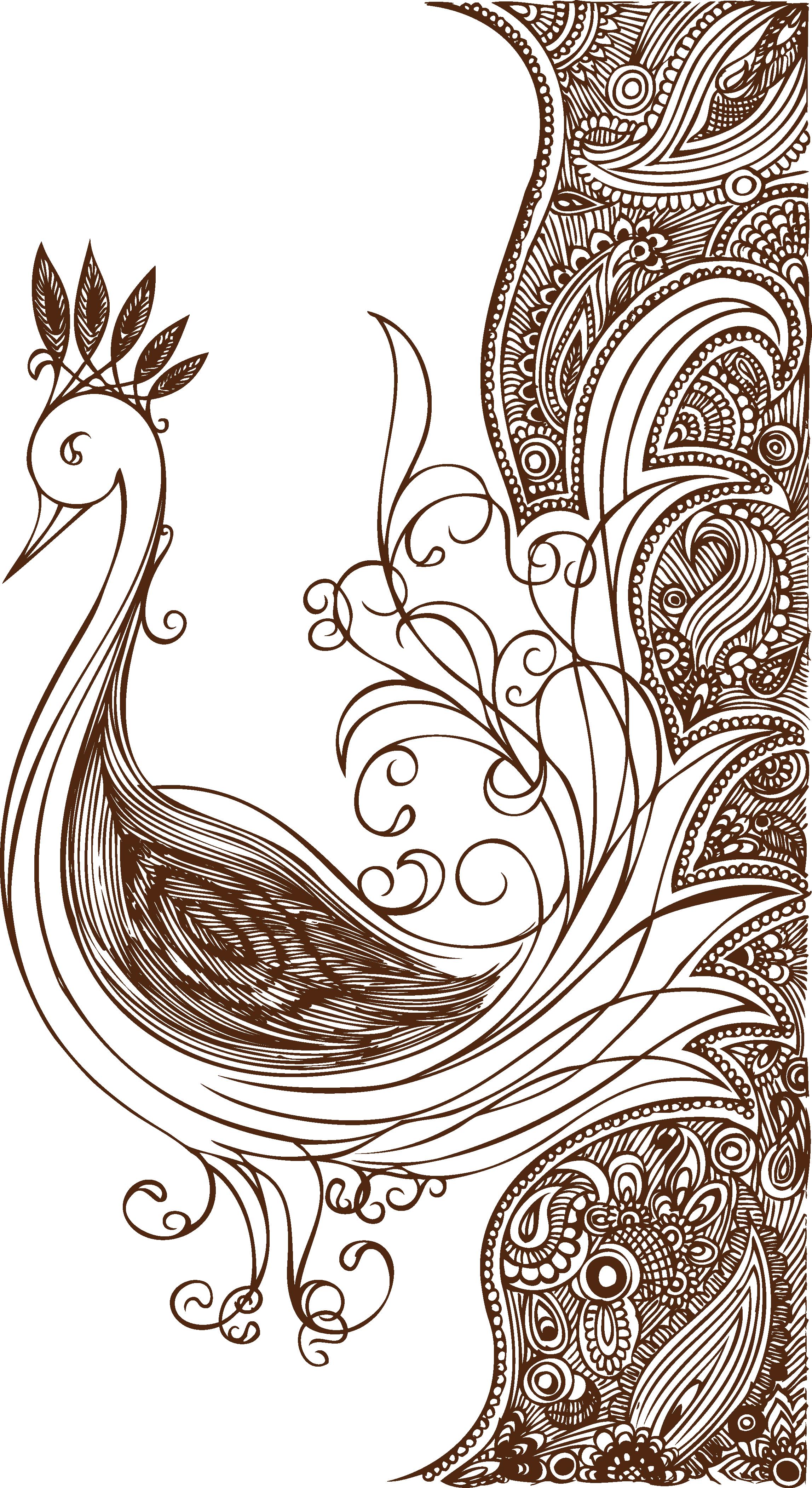 clip art Floral design flower peacock. Drawing peacocks line