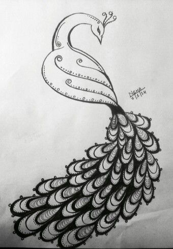 image library Drawing peacocks pencil. Peacock sketch sketches