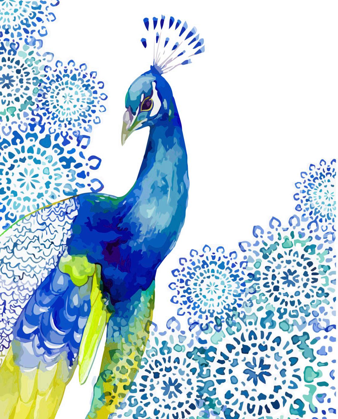 vector stock Drawing peacocks watercolor. Painting peafowl art peacock