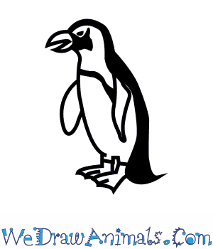 image black and white library Drawing penguin african. How to draw an