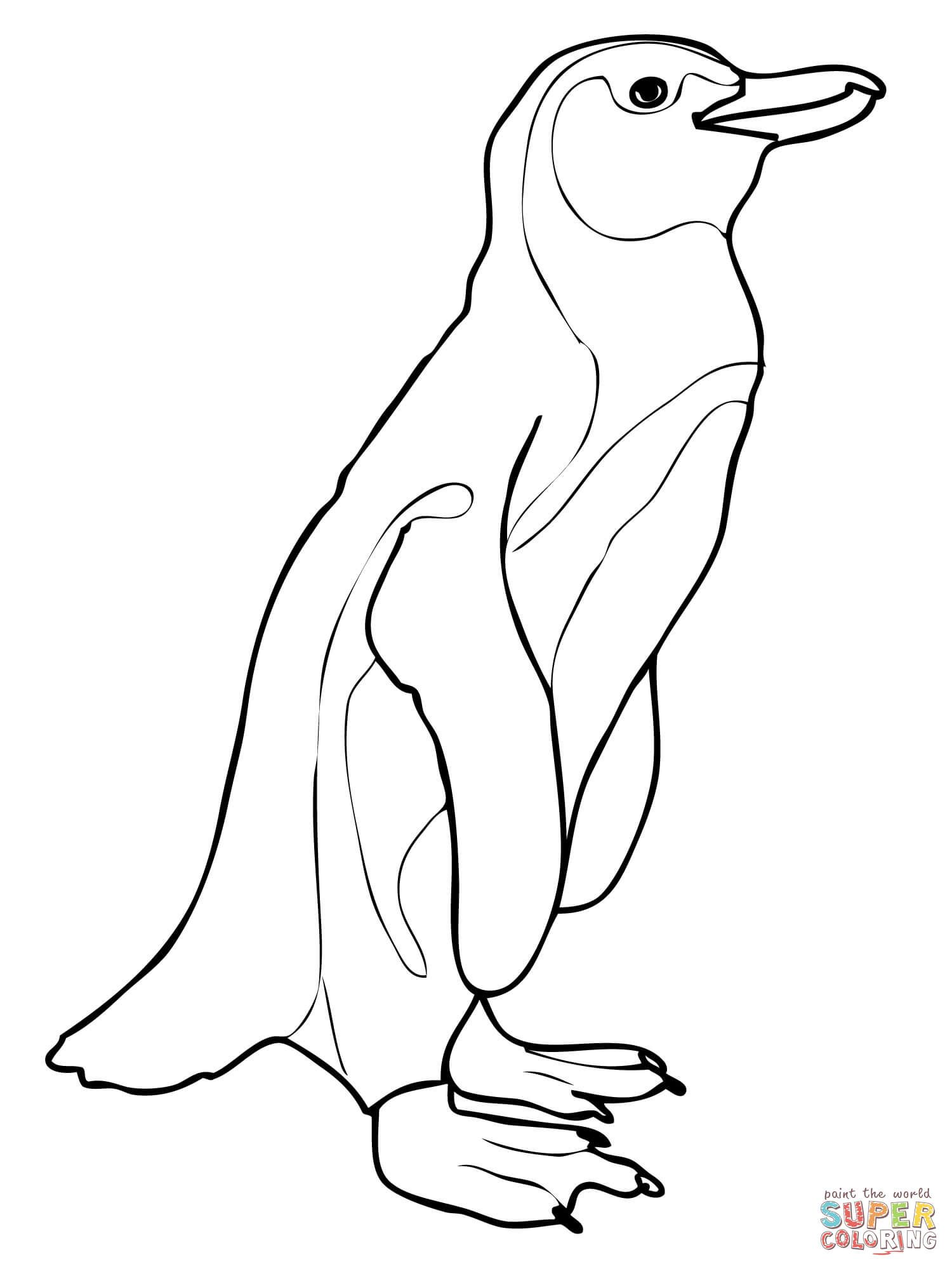 vector free library Drawing penguin african. Aka jackass coloring page