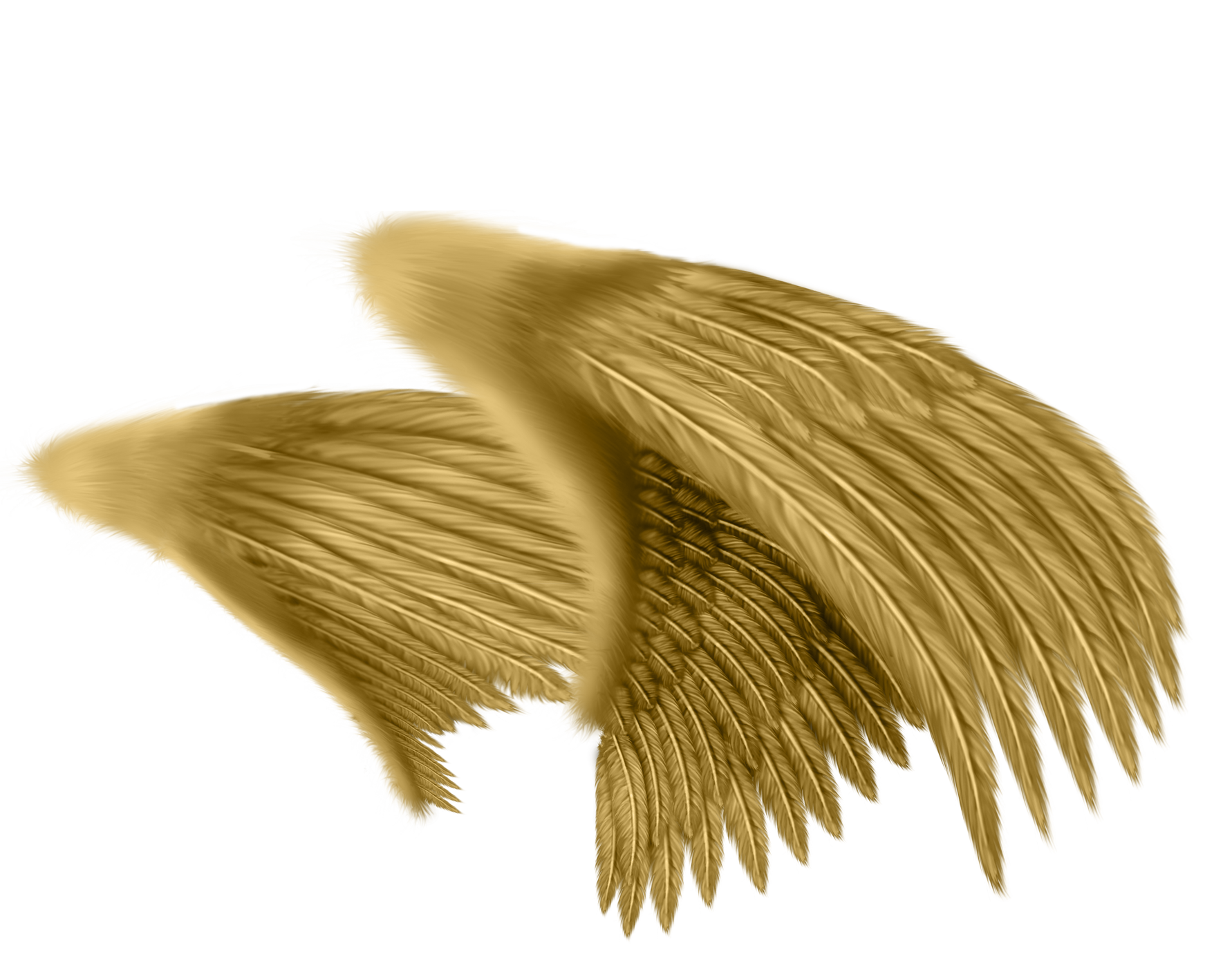 svg royalty free stock Drawing photography angel. Feather wings pattern material
