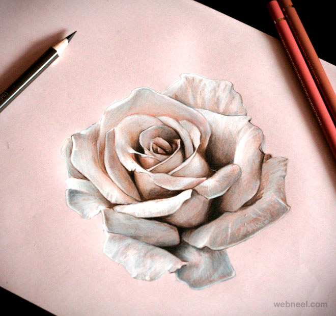 svg black and white Drawing photography rose.  beautiful drawings and
