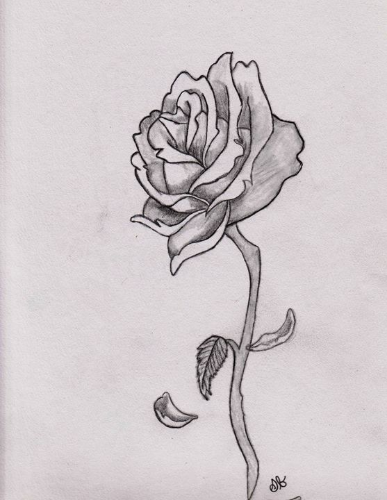 clipart freeuse stock Beautiful s brown drawings. Drawing photography rose