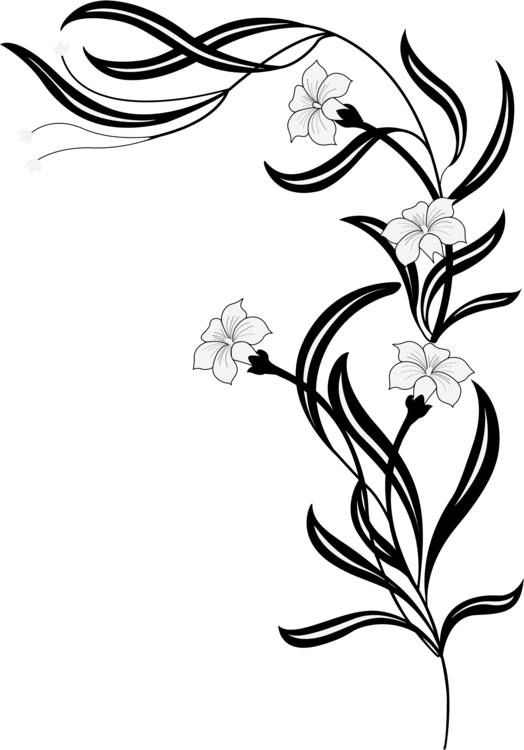 clip art library Flower floral black and. Drawing pic design