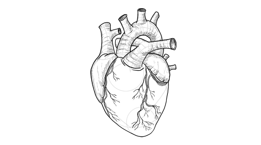 stock Drawing pic heart. How to draw a