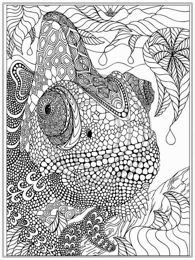 banner transparent Drawing printables realistic. Printable iguana adult coloring