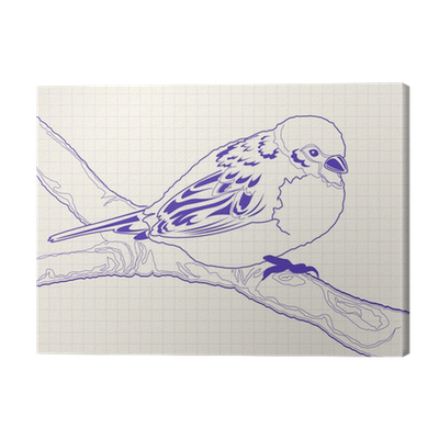vector black and white library Hand drawn sparrow bird. Drawing prints pen