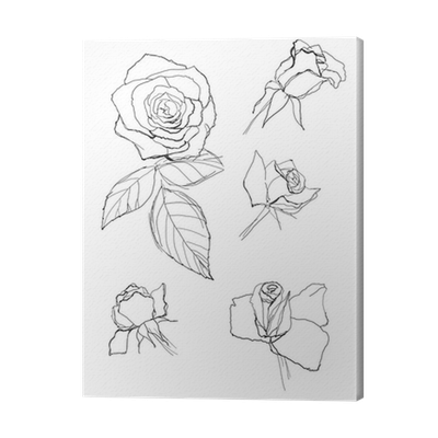 clip library stock Drawing prints pen. Roses collection canvas print