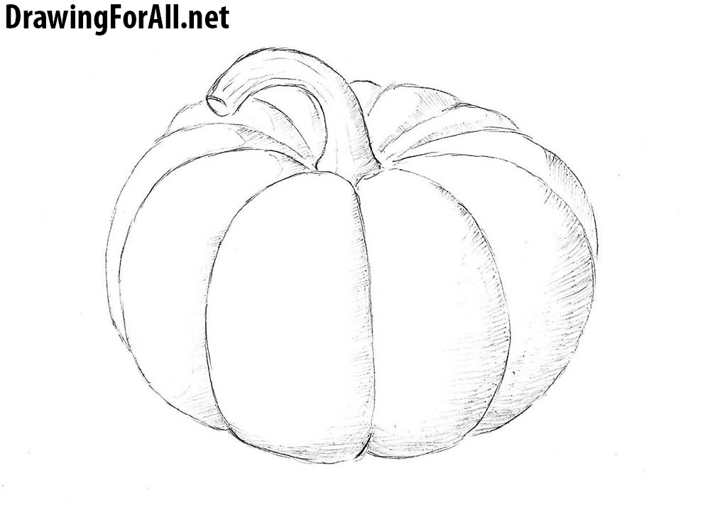 vector transparent stock Drawing pumpkin. How to draw a