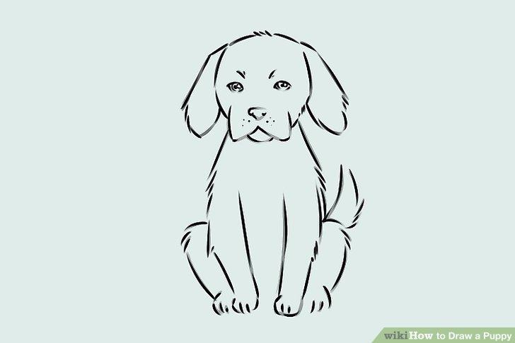 svg drawing puppy basic #134821252