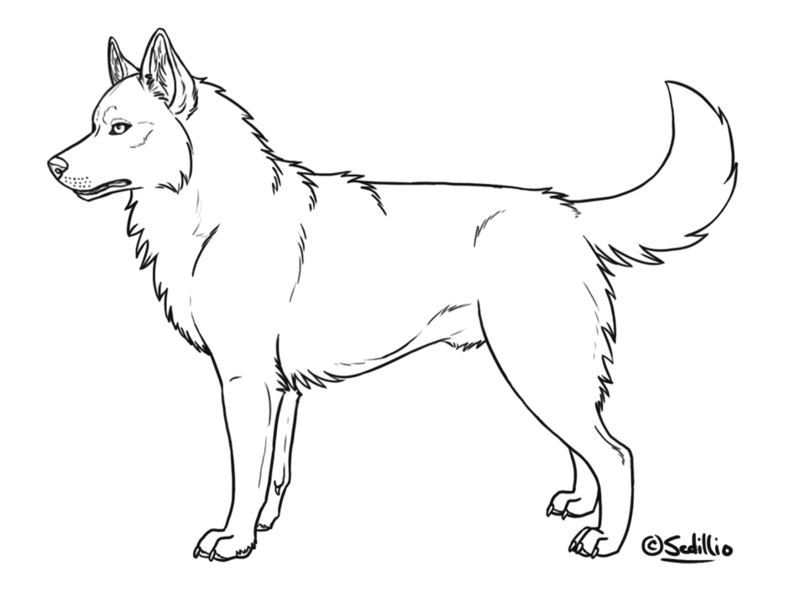 vector transparent Cute Husky Drawing at GetDrawings