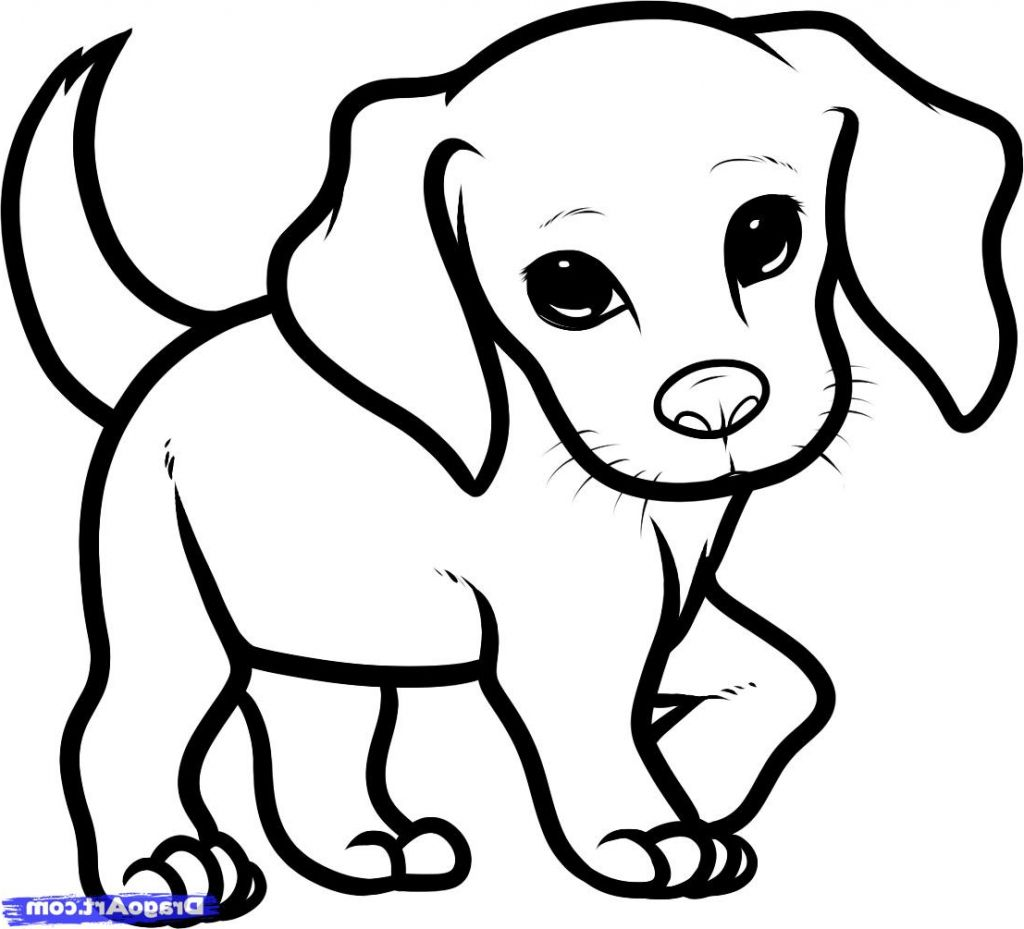 png royalty free library Drawings Of Puppies How To Draw Puppy