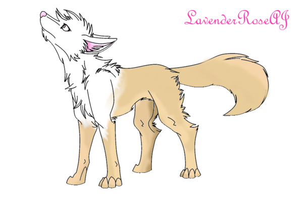 image royalty free stock By nicoleartomg on deviantart. Drawing random wolf
