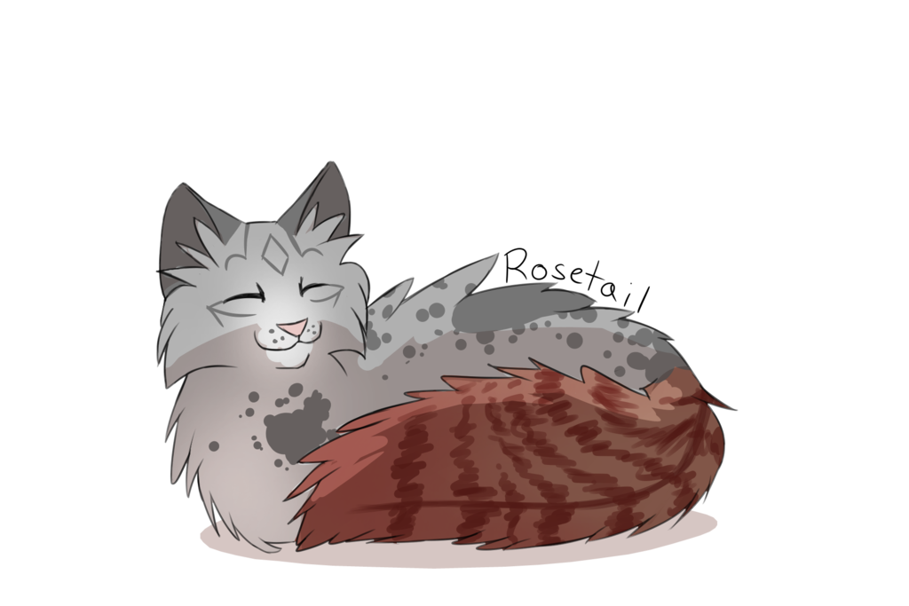 vector freeuse stock Daily random warrior cats. Drawing randomizer cat