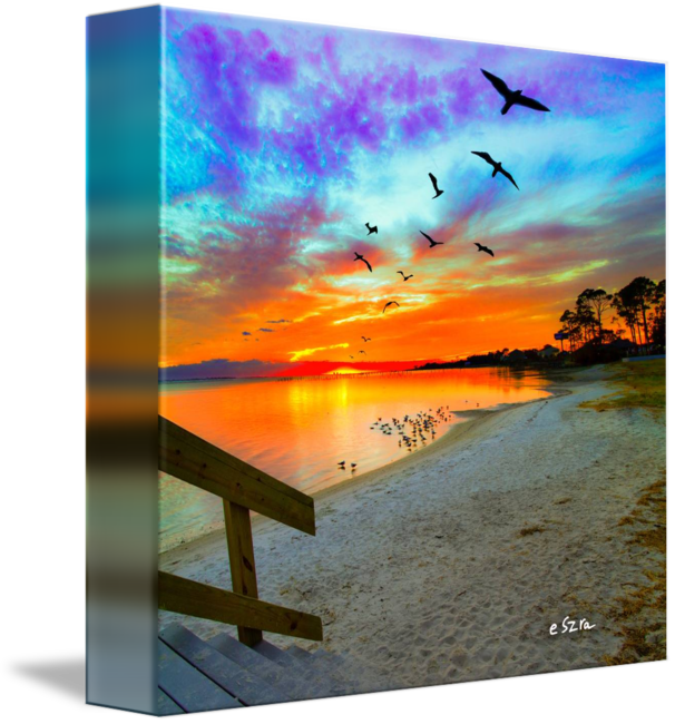 graphic library library Birds soaring orange reflection. Drawing reflections sunset