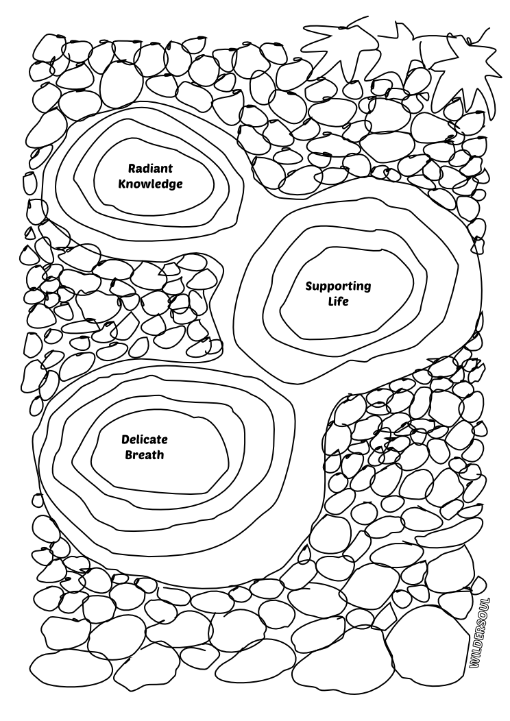 vector transparent Rock Garden