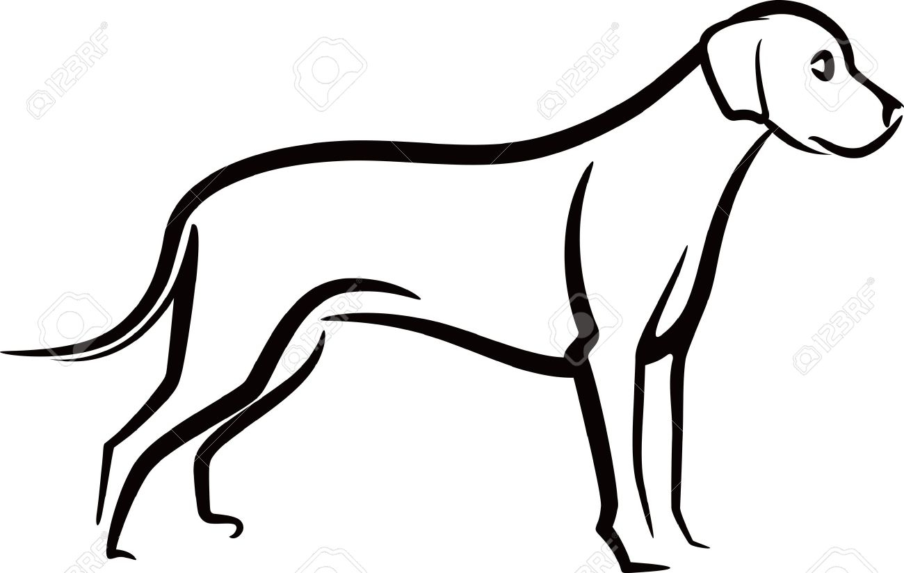 clip library Drawing salves dog.  salve for free